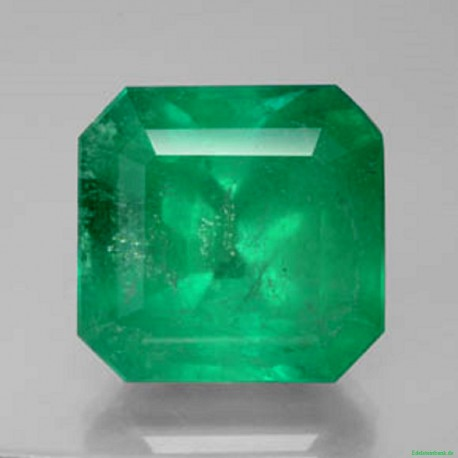 Smaragd - 28,80 Karat Grün 19mm x 18,5 mm