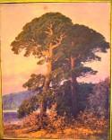 Märkische Kiefer am See im Abendrot, Rudolf Hellgrewe, 1896