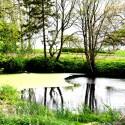 Wassergrundstücke
