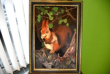 Eichhörnchen zwischen den Baumästen, Gundula Oppermann, 1989