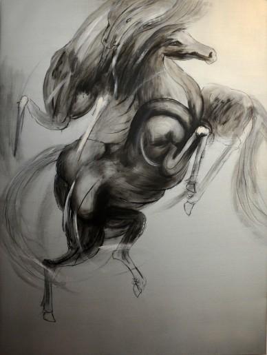 Cavallo Selvaggio, 2004