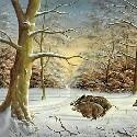 Winter & Schnee